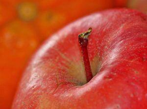 Huntsville AL Dentist | How to Get Your Kids to Eat Healthier